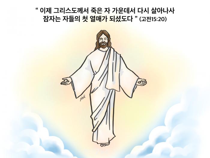 181호 만평.png