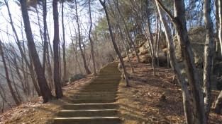 경상북도, 트레킹, 탐방로 등 숲길 조성 및 유아숲체험원 운영