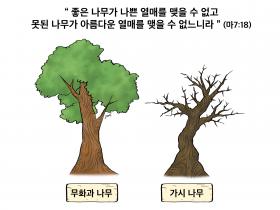 하나만평(경북하나신문 184호)