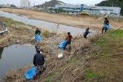 축산면, 태풍에 쌓인 하천쓰레기 청소
