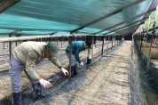 영주시, 외국인 계절근로자 사업 참여 농가 모집