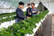 낙동면, 새 소득 작목 농가현장 방문