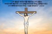 하나만평(경북하나신문 180호)