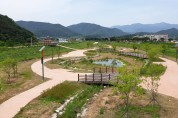 풍각천 생태습지 품은 건강 하천으로 복원