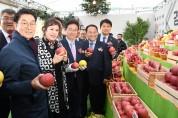 대한민국, 경북사과로 온통 물들다!