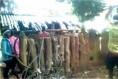 인도, 2000~3000명의 폭도들이 반기독교 선동, 크리스천 가정집 파괴