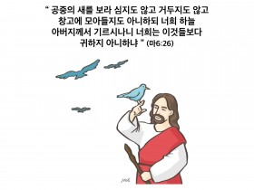 하나만평(경북하나신문 186호)