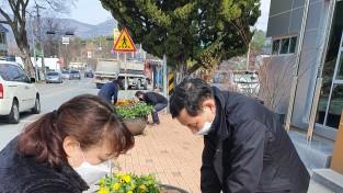 경산시 남천면, 도로변에 화사한 봄꽃 식재하여 봄 단장 준비
