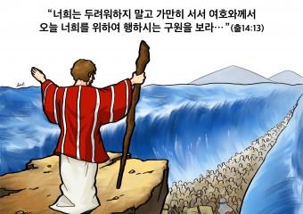 하나만평(경북하나신문 176호)