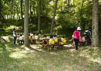 청송군, 아이들 감성 일깨워주는 유아숲 체험장 운영