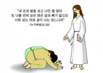 하나만평(경북하나신문 169호)